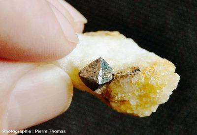 Octaèdre de pyrite au sein de calcite, carrière de Trimouns (Ariège)