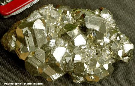 Ensemble de cristaux de pyrite de morphologie complexe (dodécaèdres cannelés et autres)