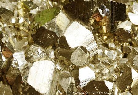 Détail de l'ensemble de cristaux de pyrite de morphologie complexe (dodécaèdres cannelés et autres)