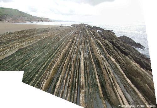 Couches quasi verticales de flyschs yprésiens (Éocène inférieur) sur l'estran de la plage de Zumaia (pays basque espagnol), à marée basse