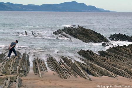 Alternances gréso-marno-calcaires quasi verticales formant l'estran de la plage de Zumaia