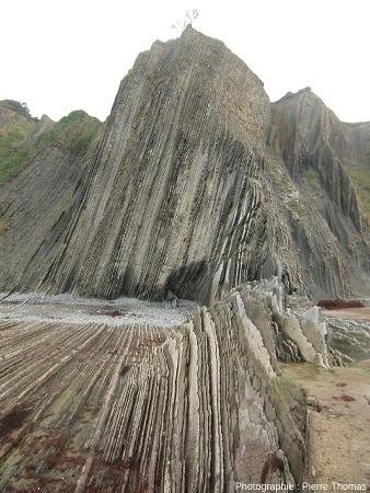 La falaise de Zumaia et ses couches quasi verticales