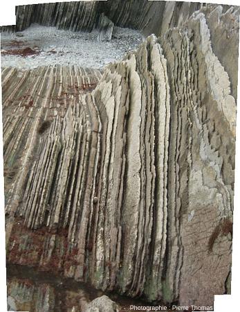 Détail sur les couches quasi verticales sur l'estran de la plage de Zumaia
