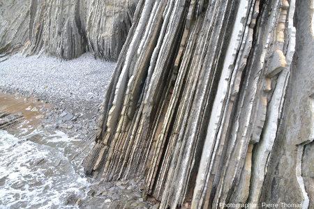 Détail sur les couches quasi verticales au pied d'une falaise bordant la plage de Zumaia