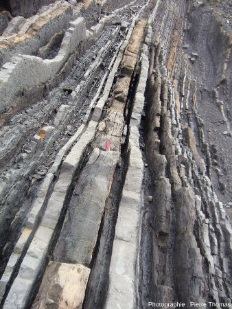 Détail d'une falaise de Zumaia et de ses couches quasi verticales