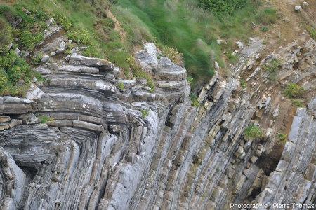 Plans axiaux des plis visibles dans le secteur de la Pile d'Assiettes, Saint Jean-de-Luz (Pyrénées Atlantiques)