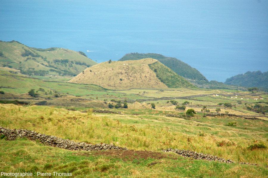 """Cônes adventifs à morphologie """"classique"""" sur le flanc Ouest du Pico (Açores), pente externe et pente du cratère voisines de 30-35°"""