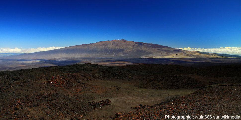 [Image: 482-cone-scories-standard-Mauna-Kea-15.jpg]
