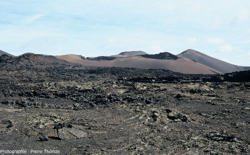 Contexte morphologique de la caldeira de Corazoncillo: champ de lave parsemé de cônes de scories