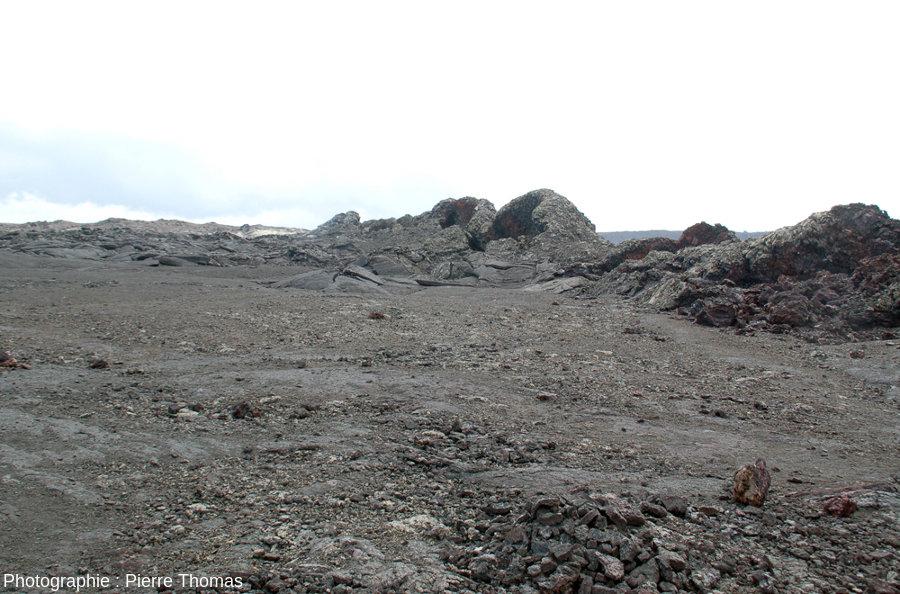 Vue sur la partie Ouest de l'alignement de spatter cones édifié en 1982 sur le plancher de la caldeira du Kilauea, Hawaï