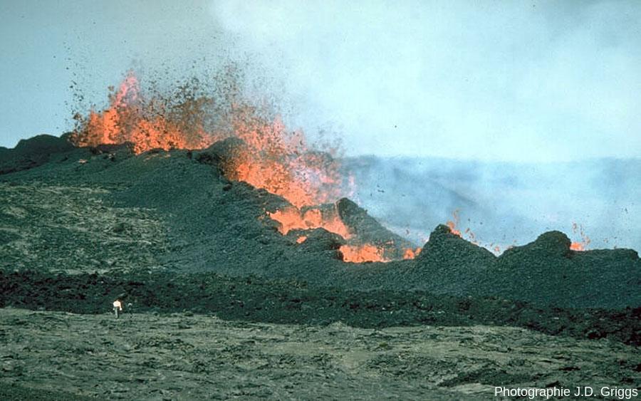 Alignement de spatter cones en cours d'édification en 1984 (26 mars) sur le Mauna Loa (Hawaï)