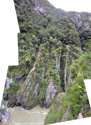 Couches quasi-verticales du flanc Ouest de l'anticlinal coffré du Gros Foug