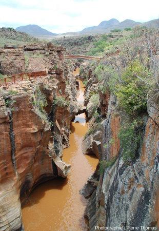 Gorges de la Blyde, juste en amont de son confluent avec la Treur