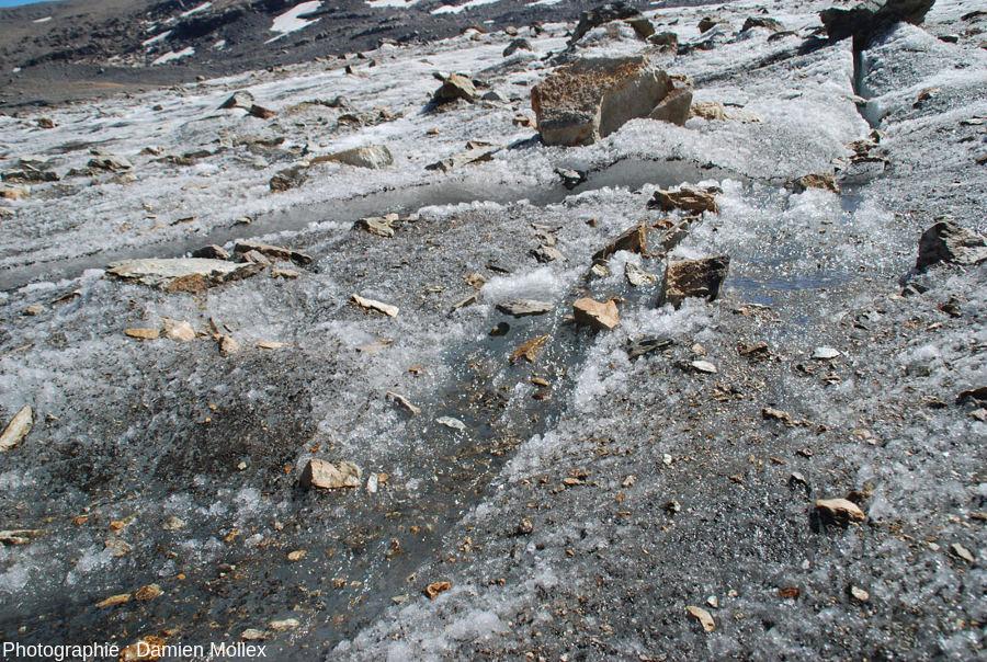 Détail de la surface du glacier de Saint Sorlin