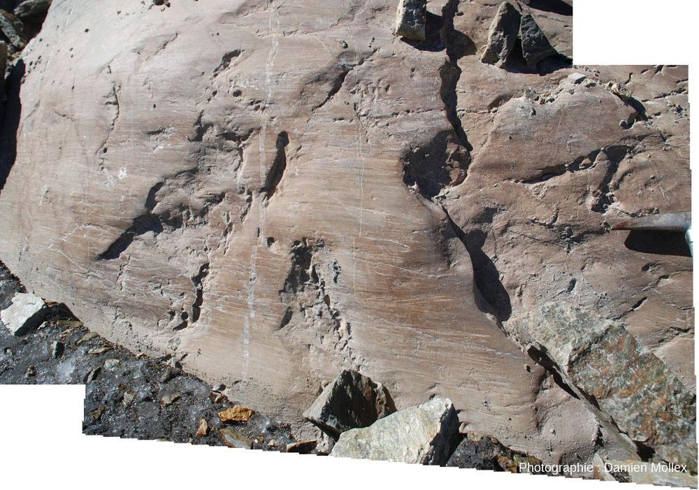 Détail de la face polie et striée de la paroi du glacier de Saint Sorlin et du contact paroi / glace avec blocs rocheux