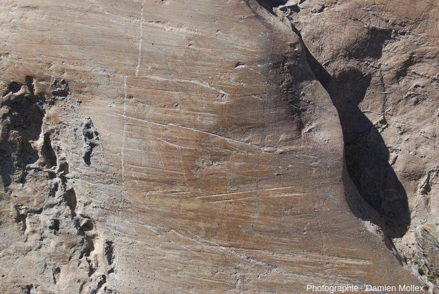 Détail des stries glaciaires récentes sur la paroi du glacier de Saint Sorlin