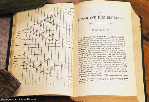 Les deux premières pages (avant-propos et avertissement non compris) de la version française de L'origine des espèces de Darwin