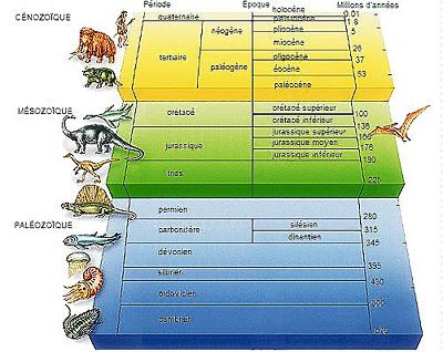 Échelle stratigraphique illustrée extraite d'une grande encyclopédie