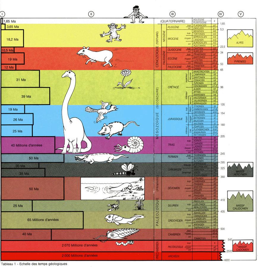 Échelle stratigraphique illustrée et humoristique du BRGM