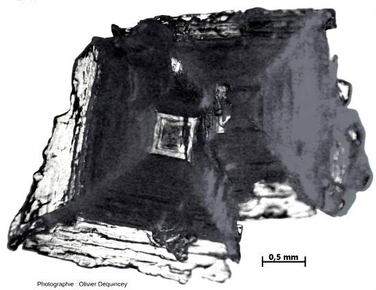 Cristaux imbriqués de fleur de sel (halite) de l'île de Ré