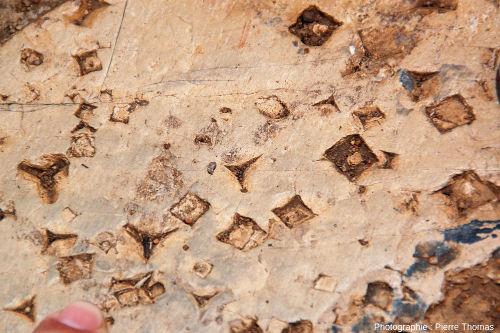 """Vue rapprochée d'une autre dalle du chemin de Bourke's Luck Potholes, Afrique du Sud, montrant des empreintes carrées de cristaux de sel, mais aussi des """"étoiles à trois branches"""""""