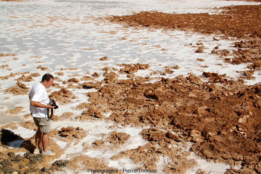 Détail de la limite entre le lac salé et les sables argileux émergés de ce lac situé à l'Est de l'oasis de Siwa, Égypte