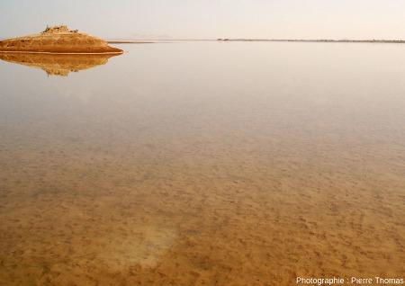 Lac encore en eau, à l'Ouest de l'oasis de Siwa (Égypte), en mars 2006, alors que le lac oriental presque à sec exhibait une belle croûte de sel à l'affleurement