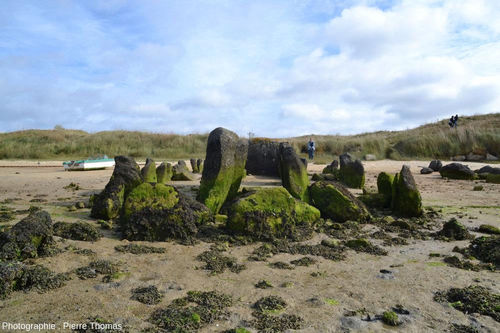 Vue, depuis le Sud, de l'allée couverte de Guinirvit, Baie de Kernic, Plouescat (Finistère)