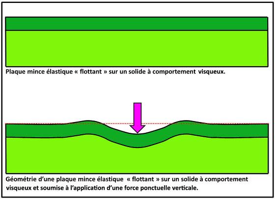 Géométrie d'une plaque mince élastique soumise à l'application d'une force ponctuelle dirigée vers le bas (flèche violette)