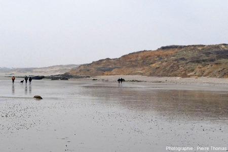 La plage, au Nord de la Pointe aux Oies, Wimereux (Pas de Calais)