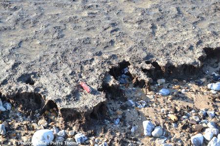 Bordure érodée (face à la mer) d'un banc de tourbe de la plage de Sangatte (Pas de Calais)
