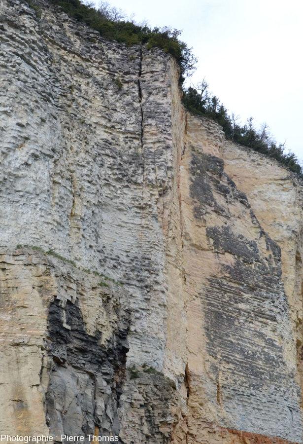 Vue de détail sur la partie Sud-Ouest de l'ancien front de taille des carrières de Couzon au Mont d'Or
