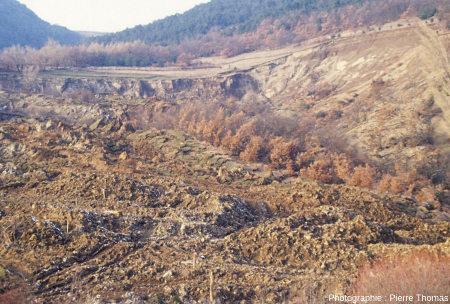 Zoom sur les 2/3 supérieurs du glissement de terrain de la Combe des Parajons à la Salle en Beaumont (Isère), janvier 1994