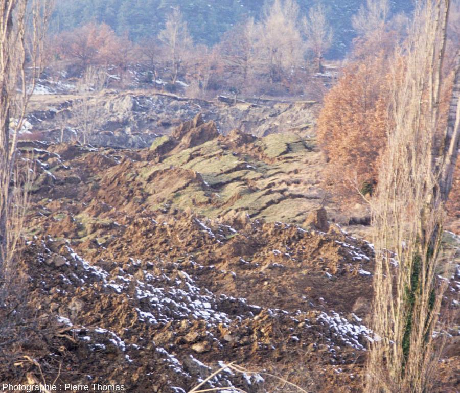 Zoom sur la zone où l'ancienne surface (anciens prés) avec son herbe est encore identifiable, mais fracturée, disloquée et basculée