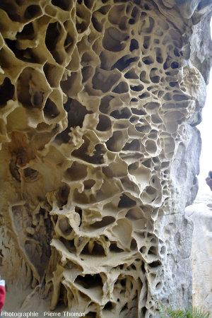 """Détails intérieurs de cette """"grotte"""" à taffonis"""