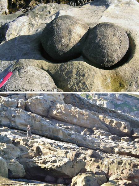 Boules gréseuses (paramoudras) de bonne taille dégagées partiellement de leur gangue de grès par l'érosion marine, Mont Jaizkibel, Pays basque espagnol