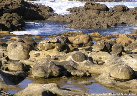 Paramoudras à moitié dégagés par l'érosion marine, Jaizkibel, Pays basque espagnol