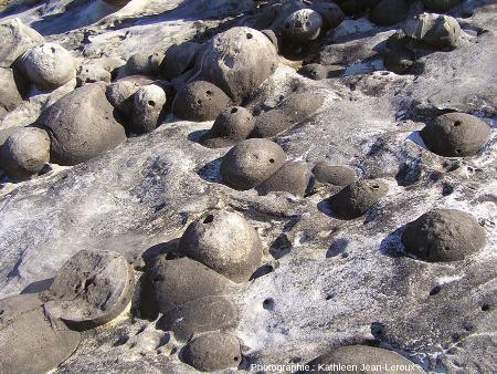 Zoom sur des paramoudras à moitié dégagés par l'érosion marine, Jaizkibel, Pays basque espagnol