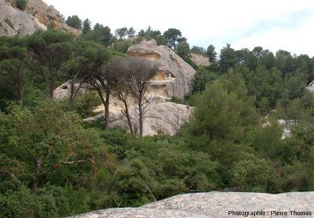 Dalles de grès (non confondues avec la stratification) montrant ces structures polygonales, dans la forêt à l'Ouest de la dalle des figures précédentes