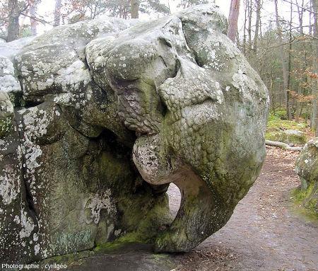L'éléphant de Barbizon (Seine et Marne)
