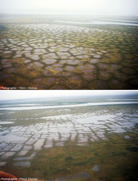 Sols polygonaux de grande taille vus d'hélicoptère quelque part au-dessus du delta de la Kolyma, extrême Nord-Est de la Sibérie