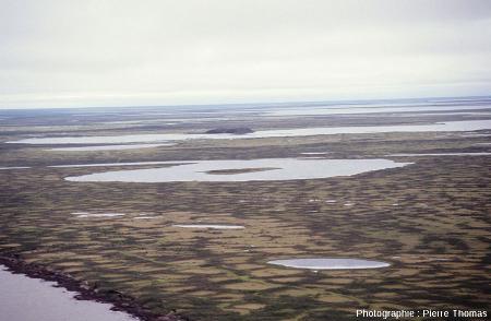 Un pingo vu de loin quelque part dans le delta de la Kolyma, Sibérie
