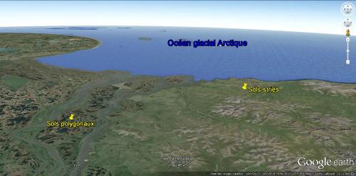 Localisation relative des secteurs riches en sols polygonaux et en sols striés dans la région des bouches de la Kolyma (Sibérie)