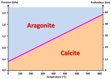 Diagramme P-T représentant les champs de stabilité de la calcite et de l'aragonite