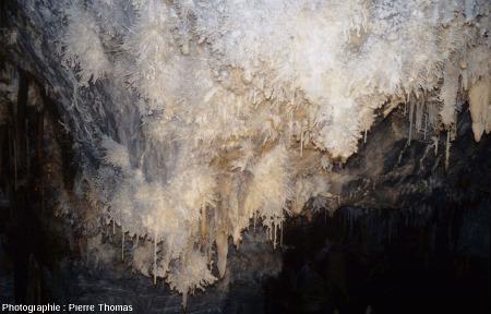 Le grand lustre de la grotte de Limousis (Aude)