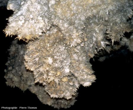 Détail d'une partie du grand lustre de la grotte de Limousis (Aude)