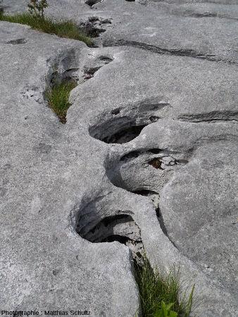 Gros plan sur des cavités et/ou des rigoles élargies semblant traverser le calcaire sur une grande épaisseur, lapiaz de Loulle (Jura) 1/5