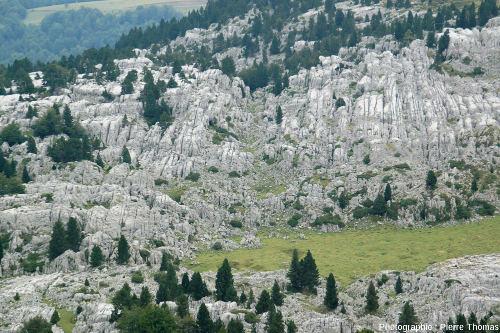 Un petit fragment du lapiaz de la Pierre Saint Martin (Pyrénées Atlantiques), l'un des plus grands lapiaz de France