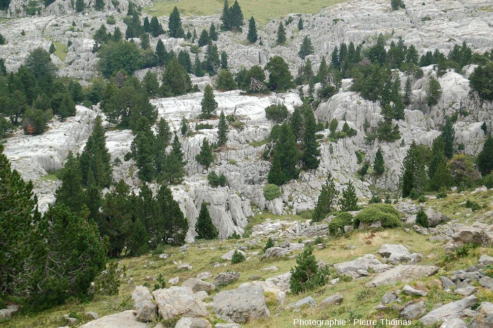 Le lapiaz de la pierre saint martin pyr n es atlantiques - Office de tourisme la pierre saint martin ...