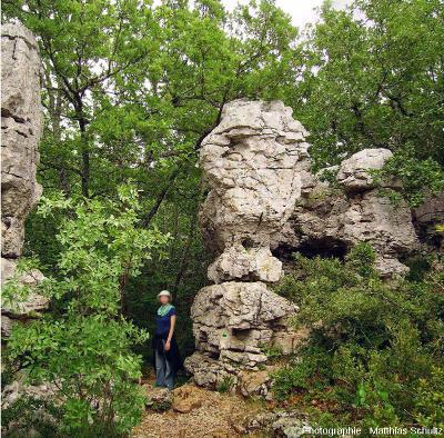 Le méga-lapiaz du Bois de Païolive, en Ardèche